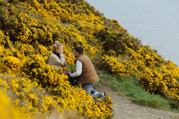 surprise proposal shoot howth dead david mcauley photography